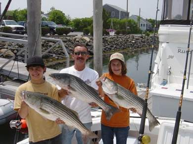 Stripers in Massachusetts