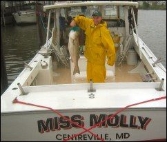 MISS MOLLY FISHING CHARTERS